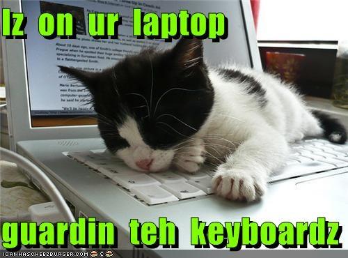 Iz  on  ur  laptop  guardin  teh  keyboardz