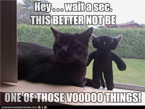 Hey . . . wait a sec. THIS BETTER NOT BE ONE OF THOSE VOODOO THINGS!