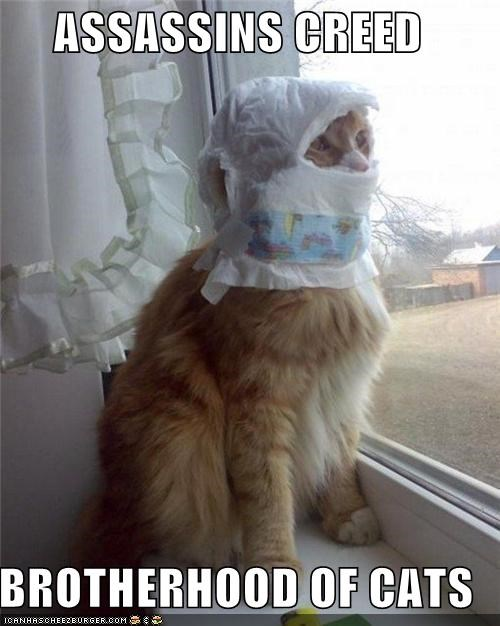 assassins creed,brotherhood,caption,captioned,cat,Cats,costume,diaper,dressed up,mask,posing,tabby,TLL,video game
