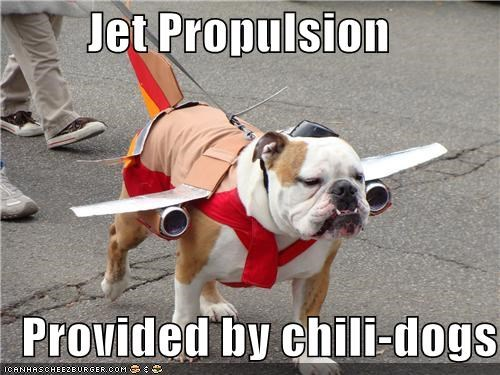 airplane bulldog chili dog costume flying food halloween howl-o-ween jet propulsion plane