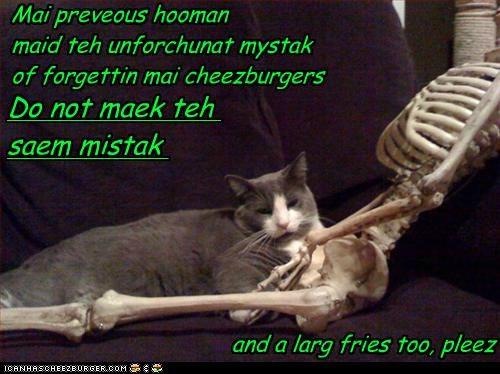 Cheezburger Image 5289280512