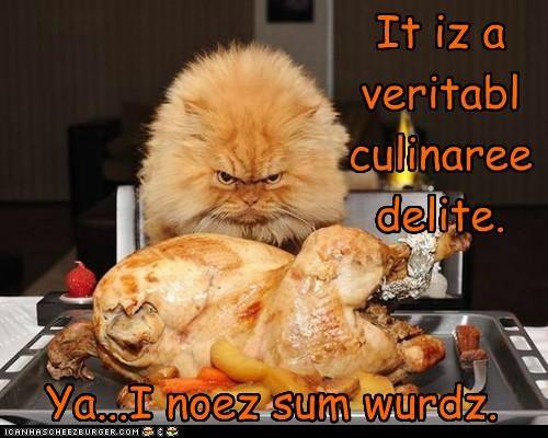 Cheezburger Image 5289826816