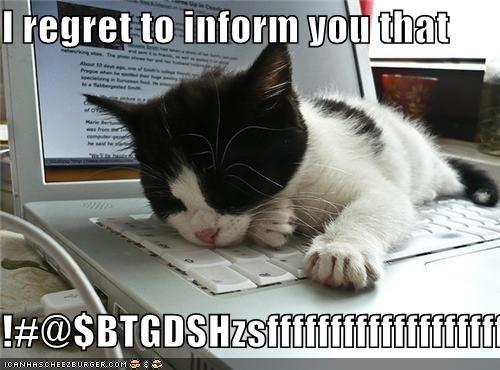 I regret to inform you that  !#@$BTGDSHzsfffffffffffffffffff