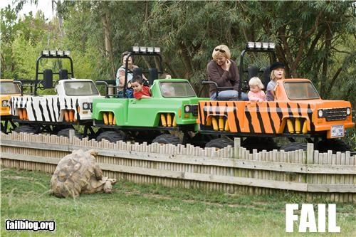 animals doing it failboat innuendo not for kids - 5291191552