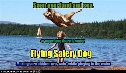 "Seen over land and sea. or anywhere there is water Flying Safety Dog Making sure chidren are ""safe"" while playing in the water"