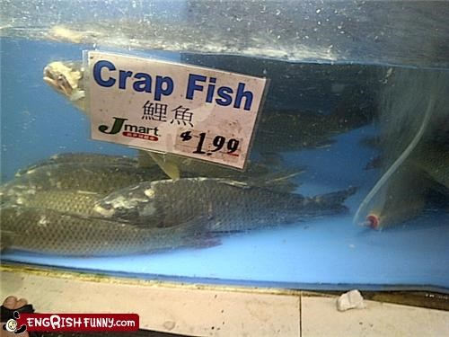 aquariums,Crappy fish,misspelled food,sign