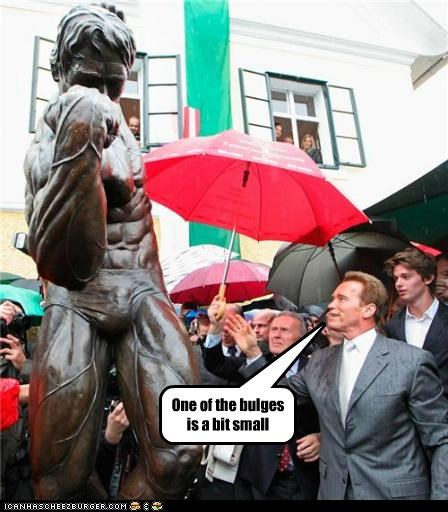 Arnold Schwarzenegger,political pictures