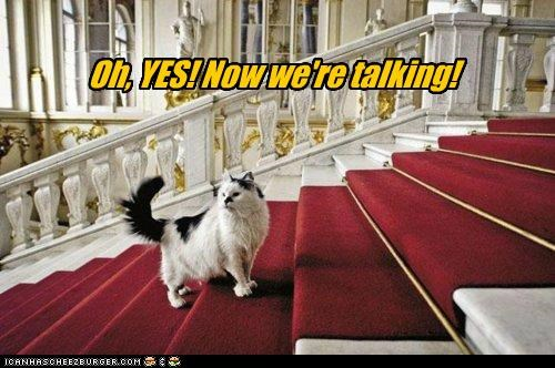 caption captioned carpet cat do want now Oh red carpet talking we are yes