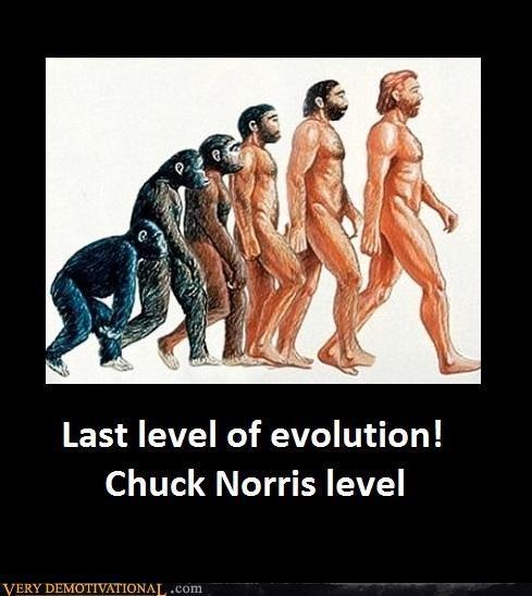 chuck norris evolution hilarious - 5296347136