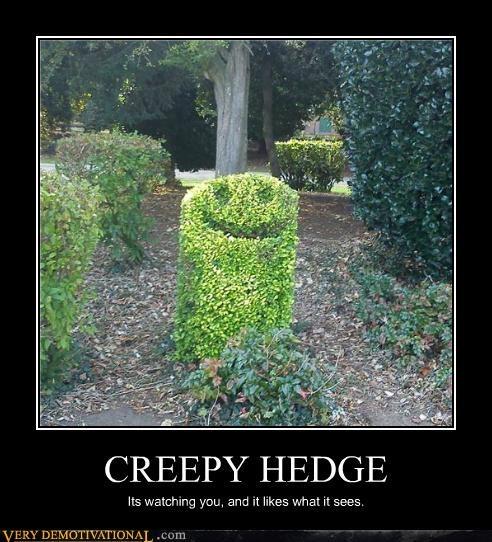 creepy hedge hilarious nature wtf - 5296386816