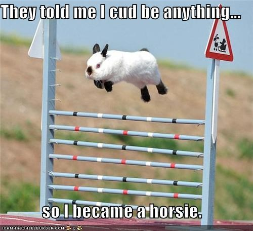 anything be became bunny caption captioned could horse horsie jumping me meme rabbit so told - 5296894720