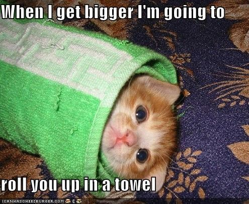 When I get bigger I'm going to roll you up in a towel