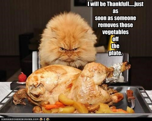 I will be Thankfull.....just as soon as someone removes those vegetables off the plate.