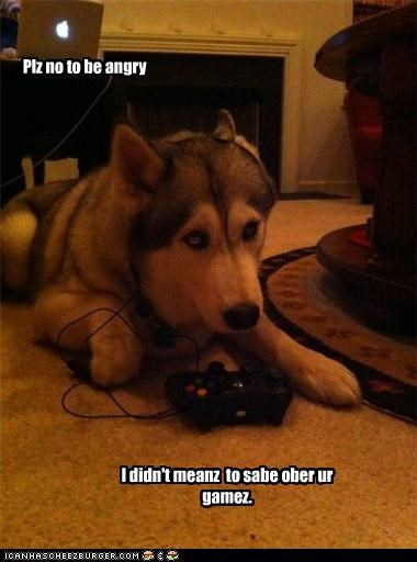 husky,oops,save,saved,saved game,sorry,video game,xbox 360