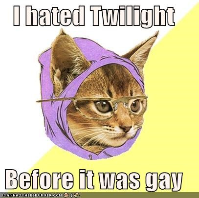 gay,hate,Hipster Kitty,still,twilight