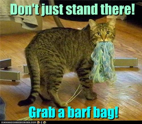 Don't just stand there! Grab a barf bag!