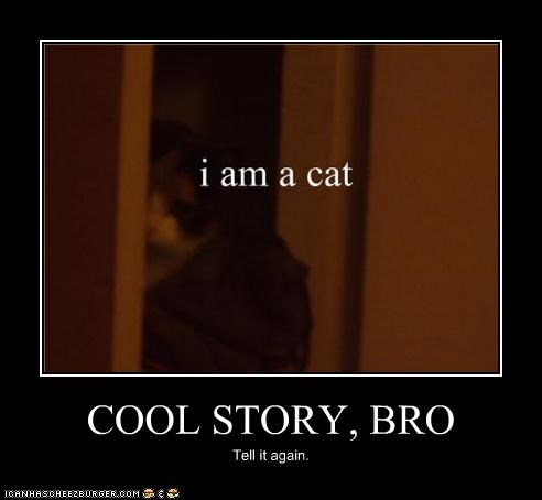 cat,cool story,talk about it,weird kid