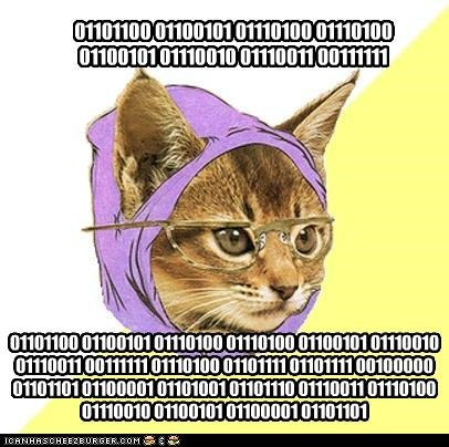 animemes binary computers Hipster Kitty nerds - 5299913472