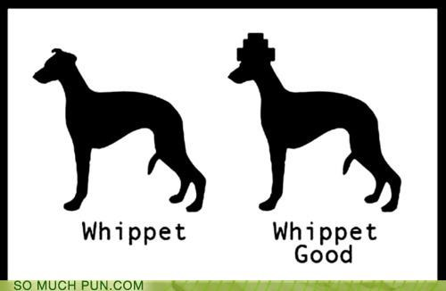 Devo double meaning Hall of Fame literalism lyrics song whip it whippet whippets - 5300088576