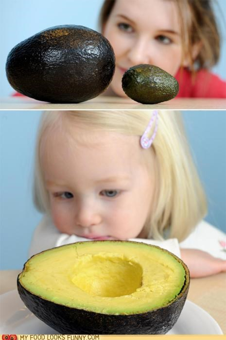 avocados funny food photos guacamole