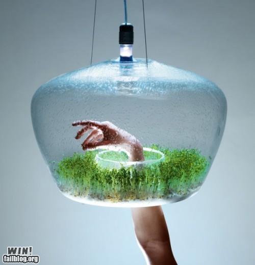 design glass growth lamp light plants - 5300585472