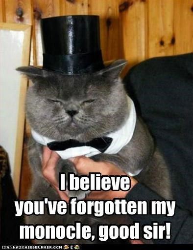 believe,caption,captioned,cat,forgot,forgotten,good,monocle,sir,upset,you