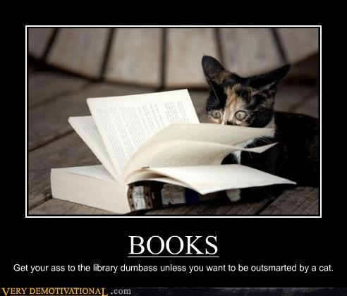 books cat hilarious library reading - 5302641408