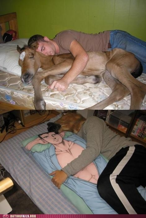 bestiality,horse,horse head,Pillow,We Are Dating