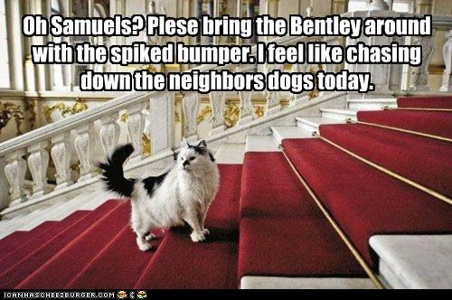 Oh Samuels? Plese bring the Bentley around with the spiked bumper. I feel like chasing down the neighbors dogs today.