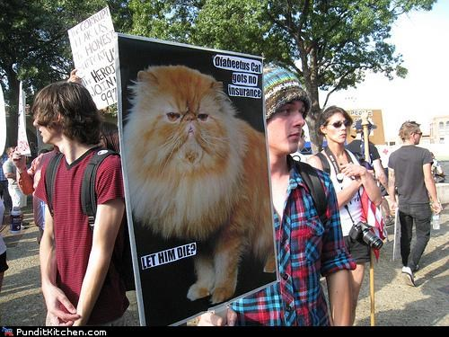 diabeetus health insurance lolcats political pictures wilford brimley - 5303667712