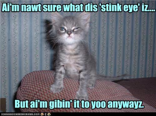 Ai'm nawt sure what dis 'stink eye' iz.... But ai'm gibin' it to yoo anywayz.