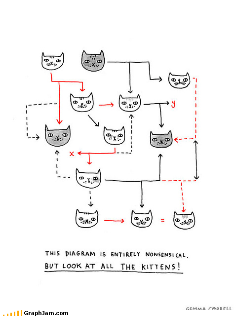 cat cute flow chart kitten wtf - 5303816448
