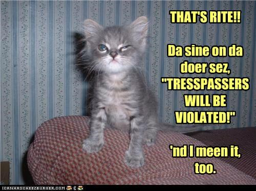caption,captioned,cat,door,kitten,promise,sign,threat,trespassers,violated