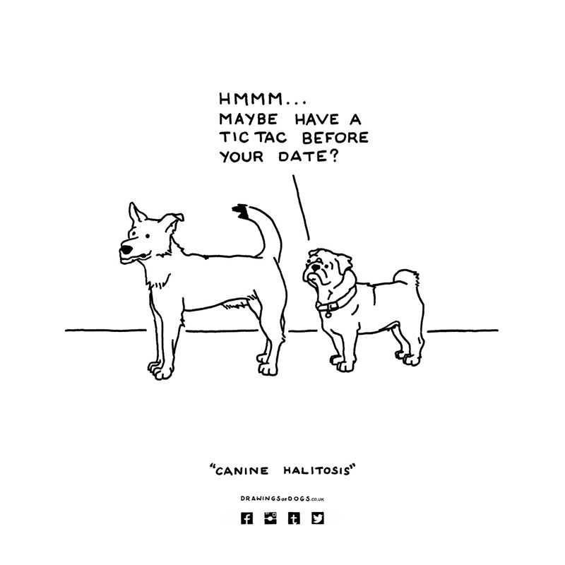dogs illustrations conversations funny web comics - 5304837