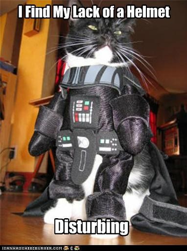 caption,captioned,cat,costume,darth vader,disturbing,dressed up,find,helmet,lack,quote,star wars