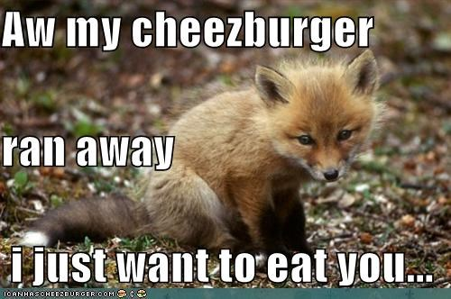 Cheezburger Image 5305472512