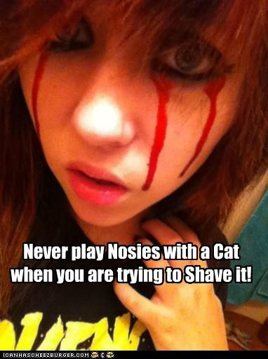 Never play Nosies with a Cat when you are trying to Shave it!