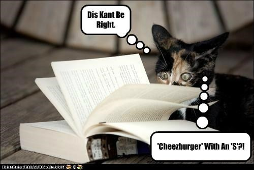 Cheezburger Image 5306820096