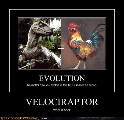 evolution hilarious rooster velociraptor - 5306963200