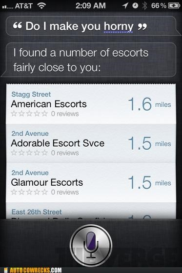 directions drugs Hall of Fame iphone life life questions love prostitutes siri voice commands