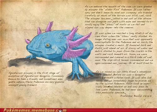 art awesome informative pokemon irl professor baobab research - 5307365120