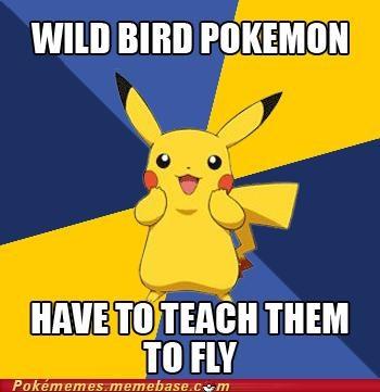 fly hm meme Memes pikachu pokemon logic wild bird - 5307628800