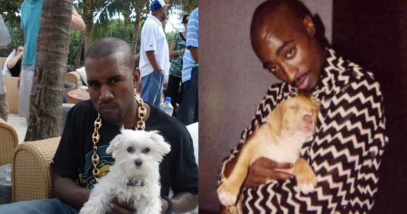 dogs Music rap cute kanye west tupac national pet day - 5308421