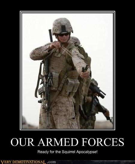 armed forces,hilarious,slingshot,squirrels
