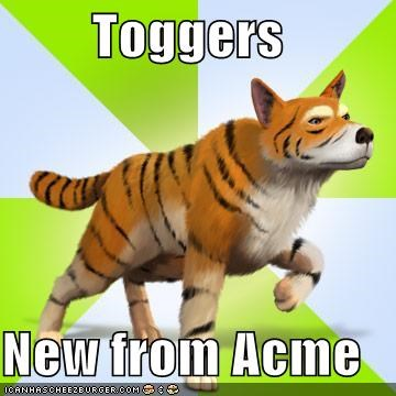 acme dogs tiger - 5309912832
