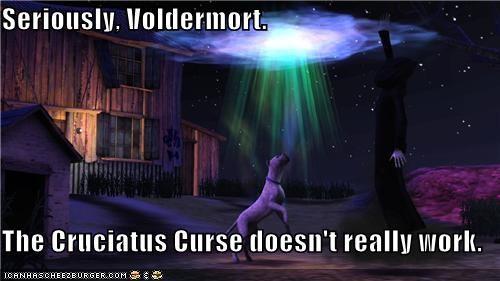 cruciatus curse Death Harry Potter voldemort - 5309988352