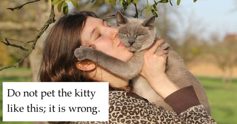 the oatmeal pets Cats national pet day funny web comics - 5310981