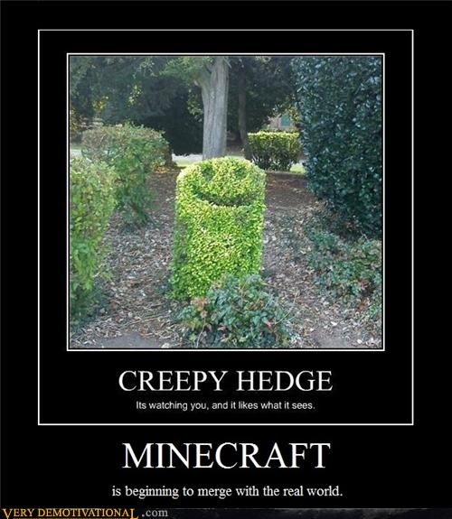 bush creeper hilarious minecraft