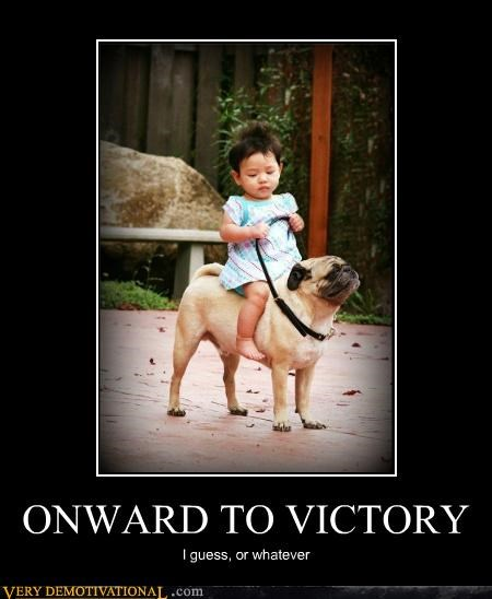 animals apathy dogs hilarious kid pug - 5311306496
