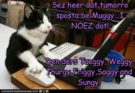 Cheezburger Image 5311762944
